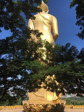 佛教文化区的图片
