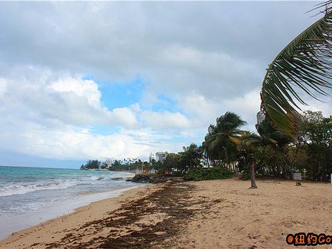 Ocean Park旅游景点图片
