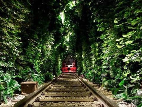 绿野仙踪旅游景点图片