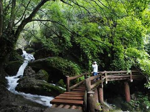 百丈桥旅游景点图片