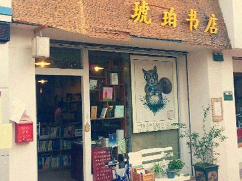 琥珀书店旅游景点图片