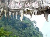 石灰山季雨林