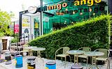 Mango Tango 芒果探戈