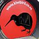 几维鸟和鸟类公园