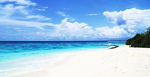 白沙海滩的图片