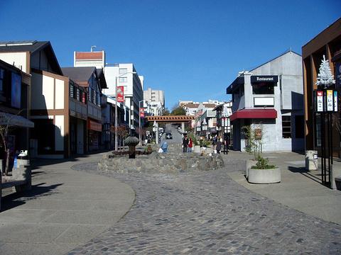 日本城的图片