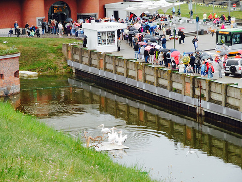 Lithuanian Sea Museum旅游景点图片