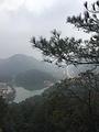 飞凤山公园