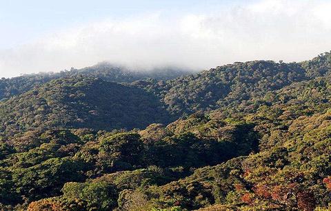 圣艾伦那旅游景点图片