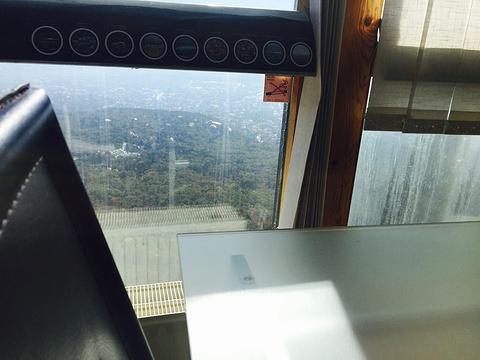 TV Tower旅游景点图片