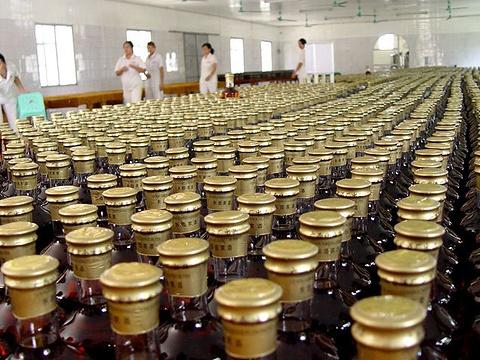 东园家酒厂旅游景点图片