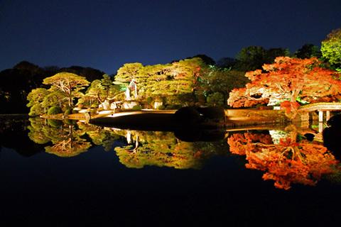 红叶和大名庭园的夜灯会