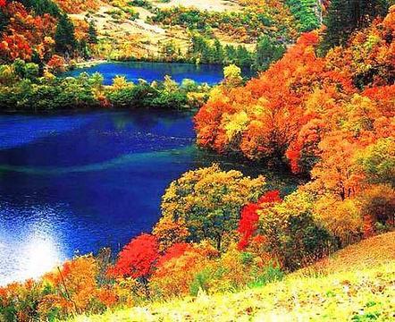 仙女池的图片