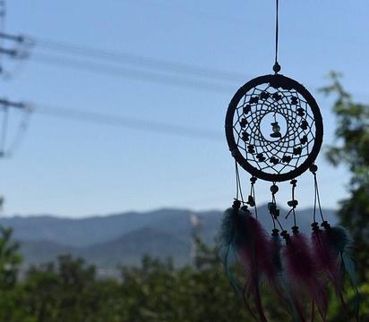 紫云台香草园的图片