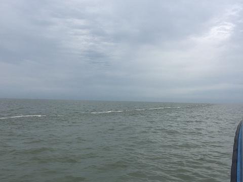 黄河口海水浴场旅游景点图片