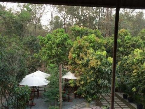 Tropical Rohal Village旅游景点图片