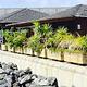 Kiosko La Cabana del Muelle