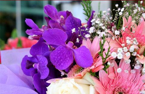 清迈鲜花市场