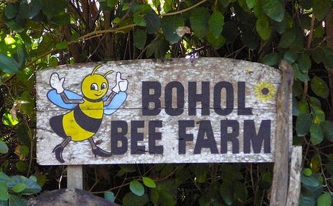 薄荷蜜蜂农场特色店