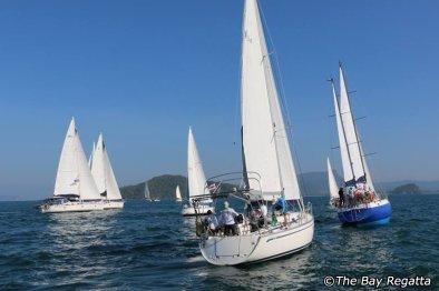 海湾帆船赛(The Bay Regatta)