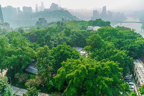 鹅岭公园阚胜楼