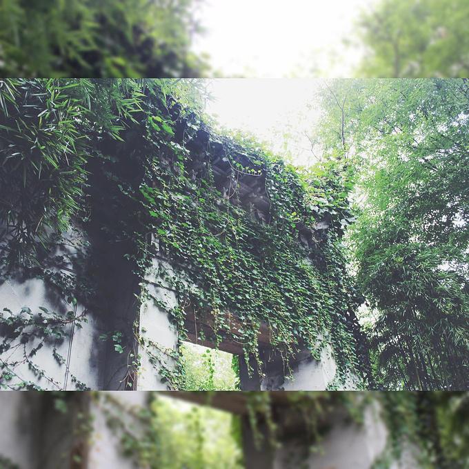 南山路图片