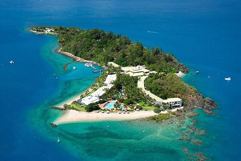 白日梦岛珊瑚礁