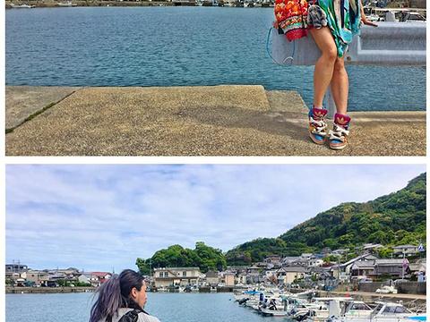 长崎企鹅水族馆旅游景点图片