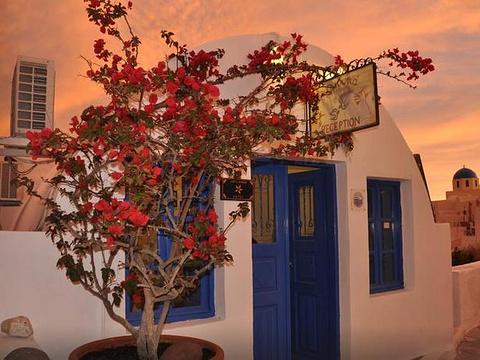 章鱼餐厅旅游景点图片