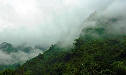 普洱太阳河国家森林公园