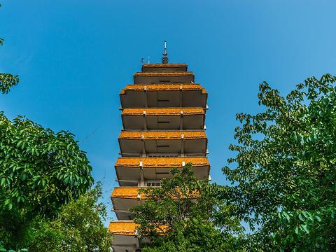 鹅岭公园阚胜楼旅游景点图片