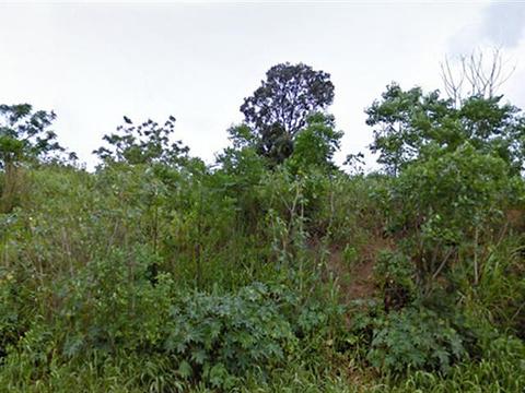 Umbogavango Nature Reserve旅游景点图片