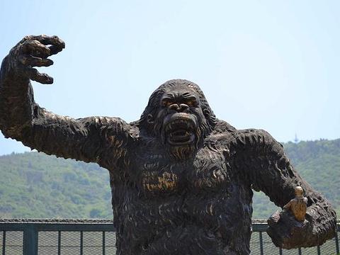 无锡动物园(太湖欢乐园)旅游景点图片