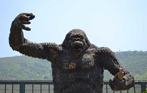 无锡动物园(太湖欢乐园)的图片