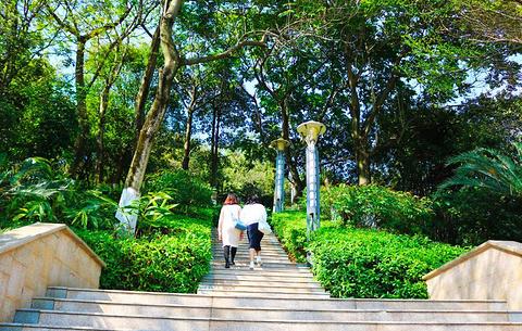 广州大学城的图片