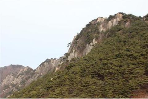 荒岭山展望台