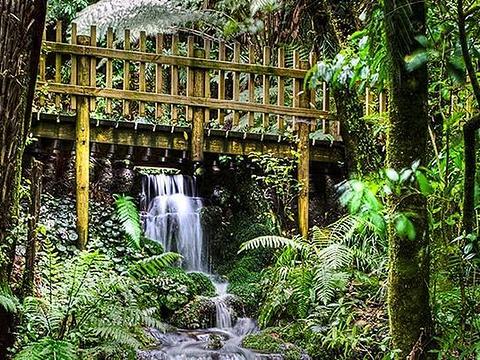 天堂谷野生动物园旅游景点图片