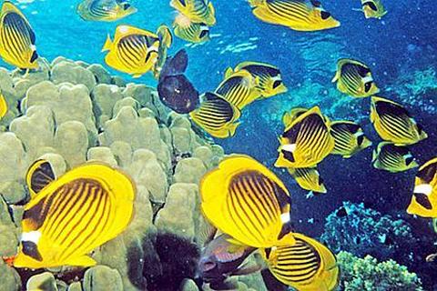 连云港海底世界