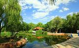 龙泉景观带