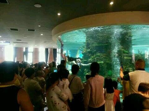 卡泊莱美人鱼自助餐厅