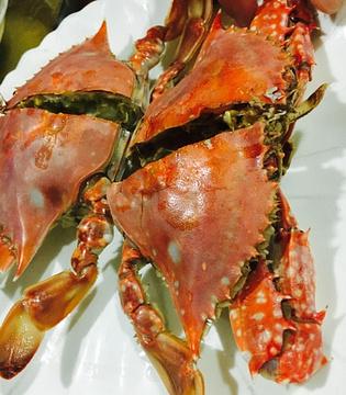 罗源湾海上28号渔排