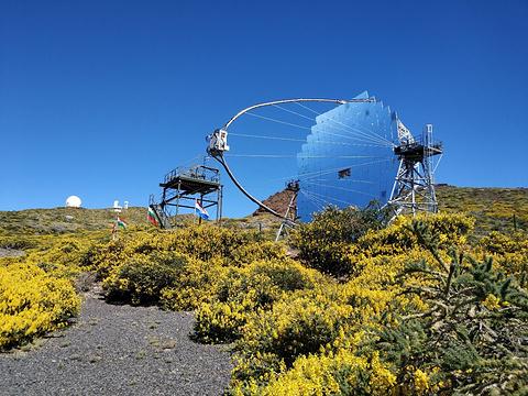 Instituto de Astrofisica de Canarias旅游景点图片