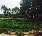 碧月泉农庄