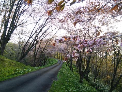 奈井江町旅游图片