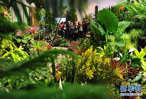 梅西花卉展