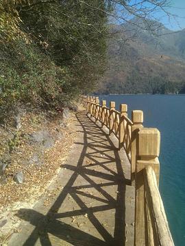 文县天池国家森林公园的图片