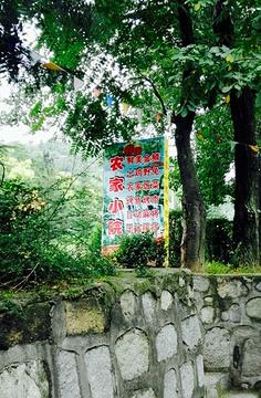 汤峪湖森林公园沪森农家小院