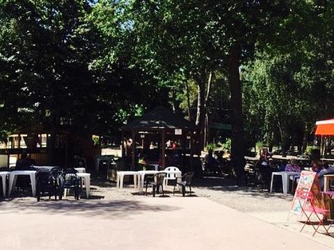 Restaurant du Lac旅游景点图片