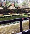 清水泉垂钓园