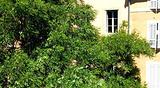 艾克斯的屋顶公寓及早餐旅馆(Les Toits d'Aix)